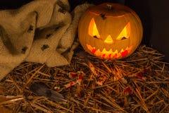 Sniden pumpa för Halloween Royaltyfri Foto