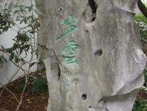 sniden sten Arkivbild