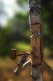 Sniden trädstam Royaltyfri Foto