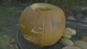 Snidit huvud för fågelskrämma för halloween pumpa kusligt Förbereda allhelgonaaftonpumpor arkivfilmer