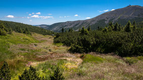 Sniezka szczyt w Karkonoszone górach Obraz Royalty Free