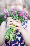 Sniff the bouquet. Beautiful bouquet of wild flowers clover royalty free stock images