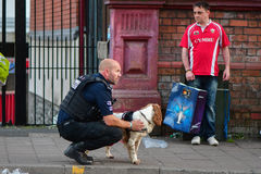 Sniffer dog and handler during Champions League Final Royalty Free Stock Photo