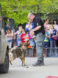 Sniffer dog show. SZEGED, HUNGARY - APRIL 26. 2015 - Excise officer (NAV) holds a presendation with a drug detection dog in the 'Earth day' event in Szeged Zoo Royalty Free Stock Images