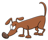 Sniffing dog cartoon Royalty Free Stock Images
