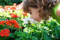 Sniffing flowers Royalty Free Stock Photos