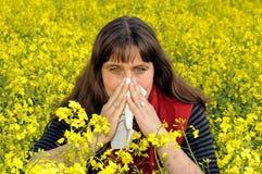 Sniffs da mulher Fotografia de Stock