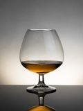 Snifter of brandy in elegant typical cognac glass on white light on grey background Stock Photos