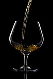 Snifter glass Stock Images