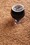 Snifter with stout over malt Stock Photography