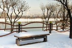 Snöig bänk i parkera Fotografering för Bildbyråer