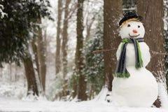 Snöig dag och snögubbe Royaltyfria Bilder