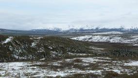 Snöig Denali Lanscape Arkivfoto