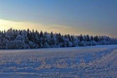 Snöig landskap Royaltyfri Bild