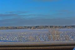 Snöig landskap Royaltyfri Foto