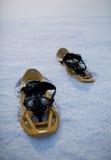 snöig liggandesnowshoes Royaltyfri Fotografi