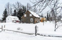 Snöig staket för vinterplatscederträ Royaltyfri Fotografi