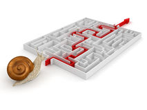Snigel och labyrint (den inklusive snabba banan) Arkivfoto