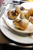 Snigelsniglar i franskt restaurangkafé Arkivfoton