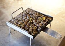 Sniglar från grillfesten, Spanien royaltyfri bild