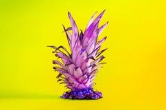 Snijd ananasbladeren op cyaanachtergrond met veranderde kleur af Selectieve kleur Het concept van de zomer Conceptenart. Minimale royalty-vrije stock afbeeldingen