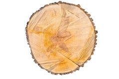 Snijd de boomstam van de perenboom Royalty-vrije Stock Fotografie