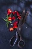 Snijd de Spaanse peper stock foto