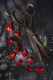 Snijd de Spaanse peper royalty-vrije stock foto
