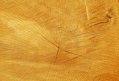 Snijd houten textuur Stock Afbeelding