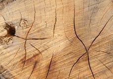 Snijd houten textuur Royalty-vrije Stock Foto