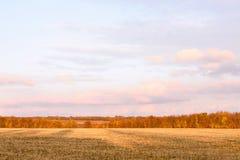 Snijd onlangs het gebied van de de herfsttarwe in een dorp in Moldavië stock afbeeldingen