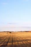 Snijd onlangs het gebied van de de herfsttarwe in een dorp in Moldavië royalty-vrije stock afbeeldingen