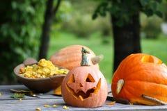 Snijd pompoenen voor Halloween Stock Foto's