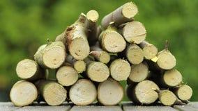 Snijd vers brandhout stock afbeelding