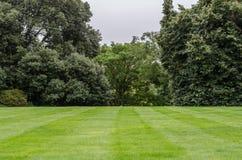 Snijd vers gazon in Engelse tuin royalty-vrije stock foto
