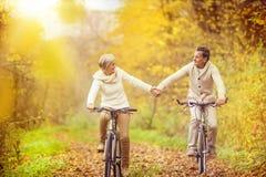 Sêniores ativos que montam a bicicleta Fotografia de Stock Royalty Free