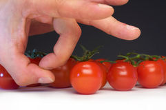 Snip a tomato. Hand snips a toamto from left to the right Stock Photo