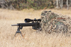 Sniper. Laying on the ground covered in a ghille suite tall grass and trees in the background Royalty Free Stock Photos