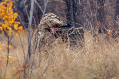 Sniper in the grass Stock Photo