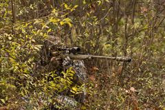 Sniper hiding in forest Royalty Free Stock Photos