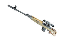 Sniper rifle MMG SVD by Dragunov with optics Stock Photos