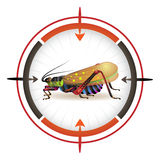 Sniper target with grasshopper Stock Images