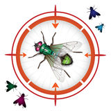Sniper target with housefly Royalty Free Stock Photography
