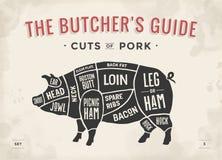 Snitt av köttuppsättningen Affischslaktarediagram, intrig och handbok - griskött Hand-dragit typografisk för tappning också vekto