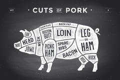 Snitt av köttuppsättningen Affischslaktarediagram, intrig och handbok - griskött Hand-dragit typografisk för tappning också vekto royaltyfri illustrationer