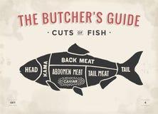 Snitt av köttuppsättningen Affischslaktarediagram och intrig - fisk Hand-dragit typografisk för tappning royaltyfri illustrationer
