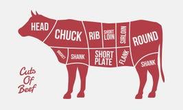 Snitt av nötkött Köttsnitt Kokontur som isoleras på vit bakgrund Tappningaffischen för kött, slaktare shoppar royaltyfri illustrationer