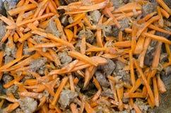 Snitt av nötkött och moroten lät småkoka i en kittel Arkivbilder