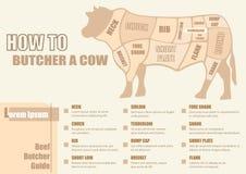 Snitt av nötköttdiagrammet vektor illustrationer