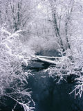Snofall and Creek (view 4). A toned image of a creek, set in a winter's snowfall royalty free stock images